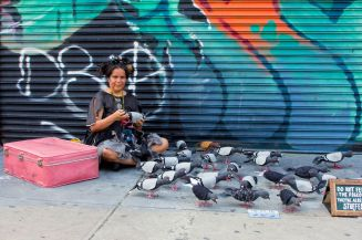 Art_Crawl-mother pidgeon